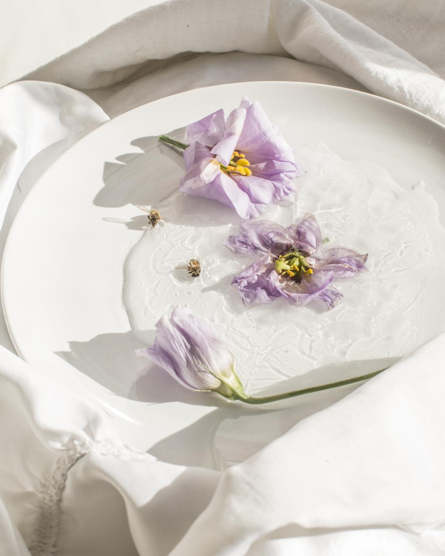 Delicate flowers on a surface by Jill Fannon