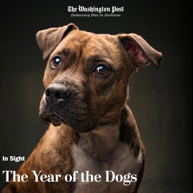 Screenshot of article posted on The Washington Post In Sight Photography Blog