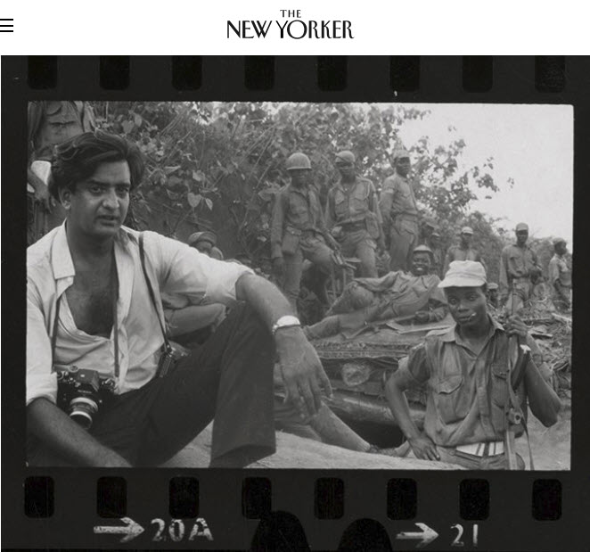 Screenshot of article posted at The New Yorker