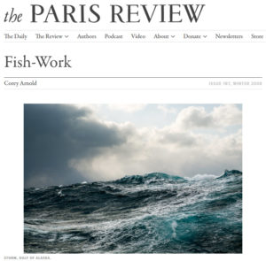 Screenshot of article posted on The Paris Review