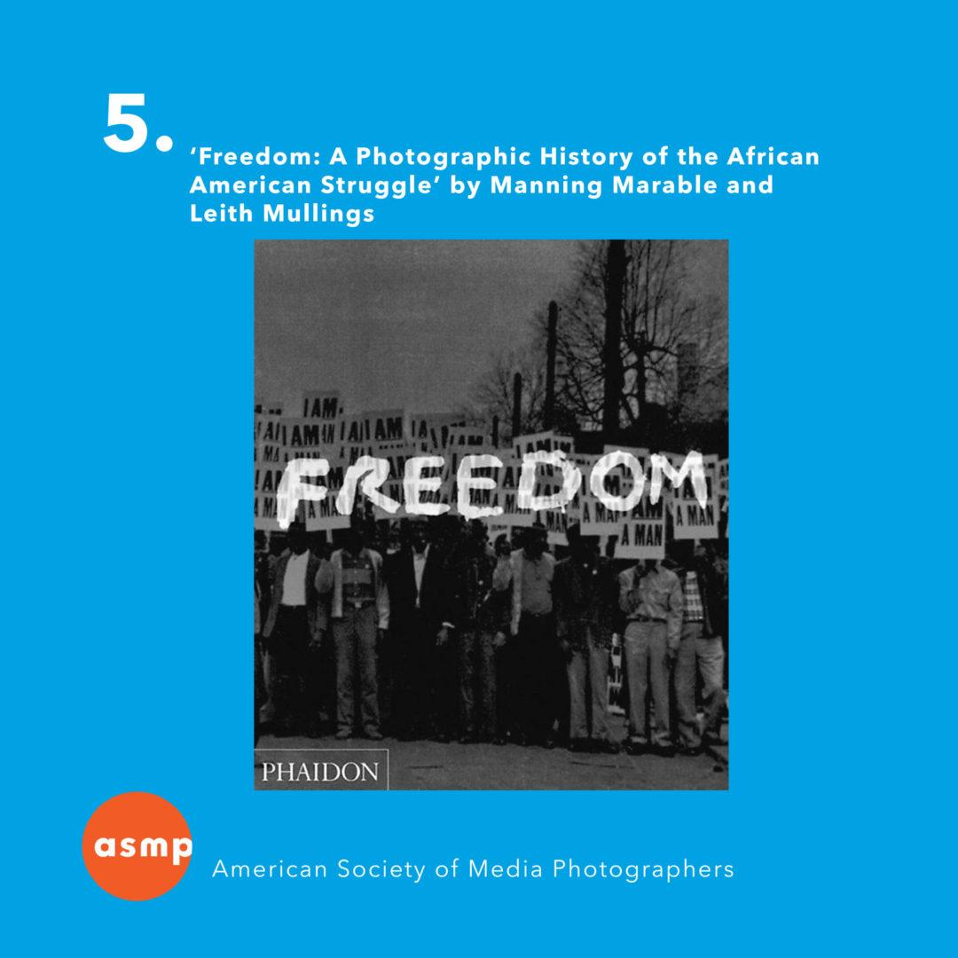 5BlackHistoryPhotographicBooks-06