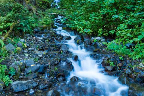 runoff stream in Columbia Gorge, Oregon