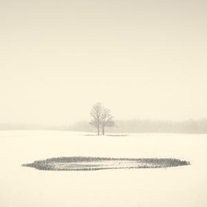 © Peter Dusek