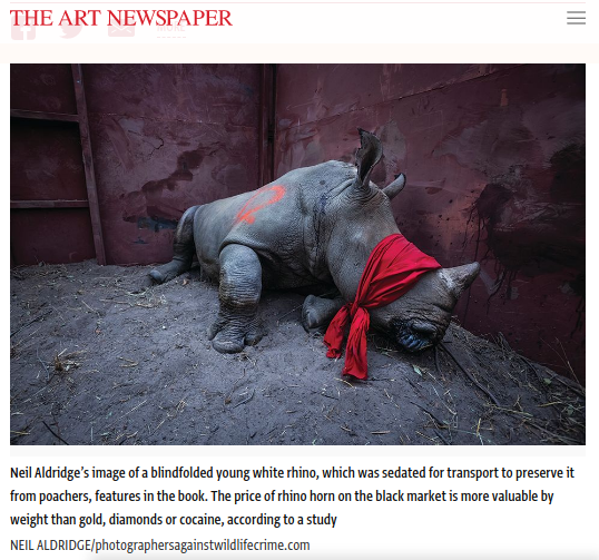 Screenshot of article posted at TheArtNewspaper